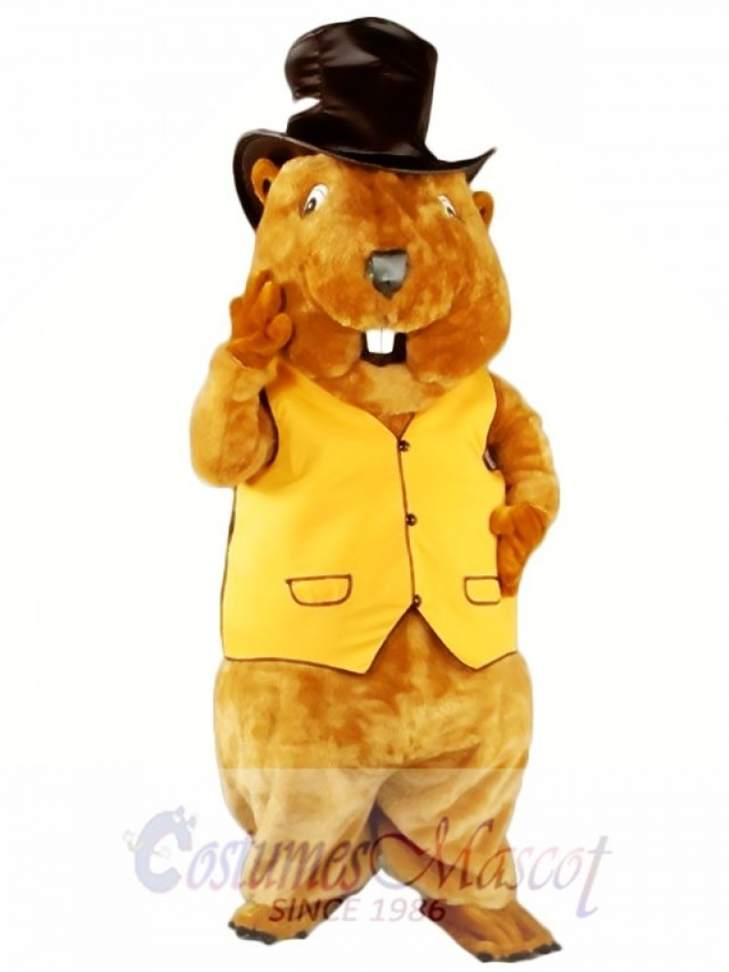 Mr. Beaver Mascot Costume