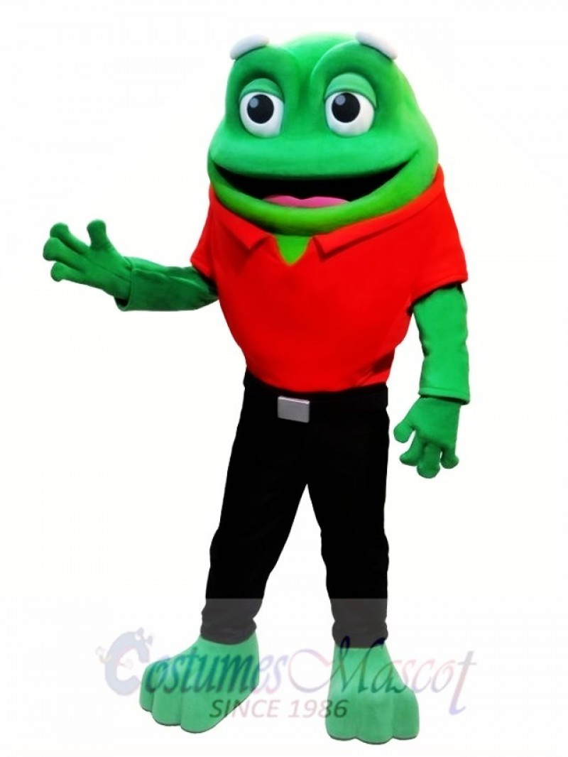 Cute Frog Animal Mascot Costume