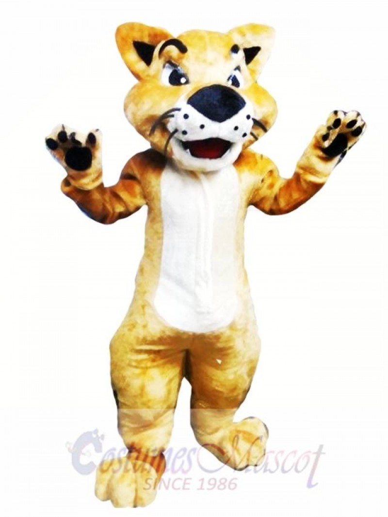 Cat Mascot Costume Adult Costume