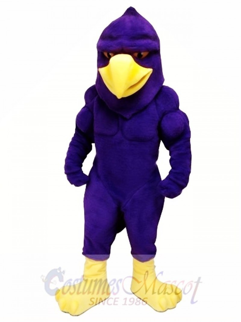 Power Hawk Mascot Costume