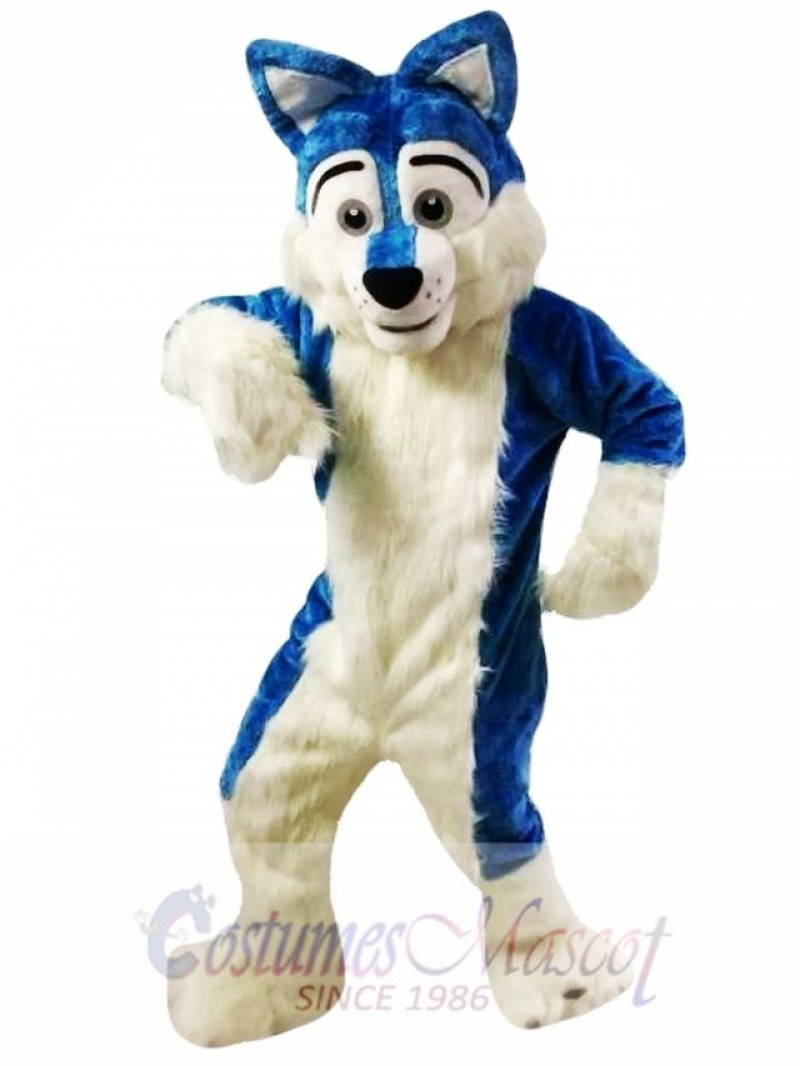 Blue Wolf Fursuit Mascot Costumes