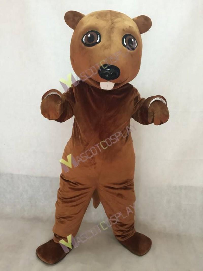 New Lovely Beaver Mascot Costume