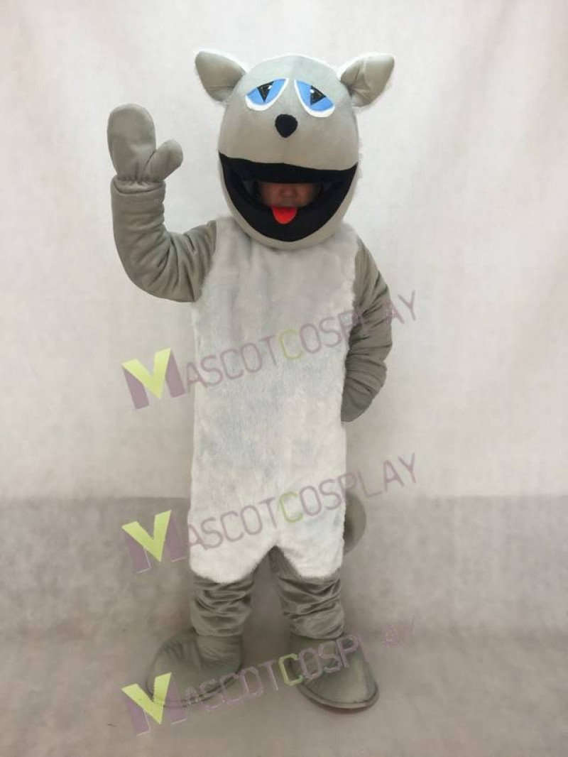 High Quality Realistic Grey Cat with White Belly Mascot Costume