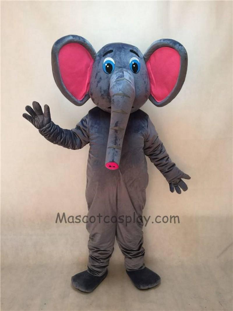 Cute New Asian Elephant Mascot Costume
