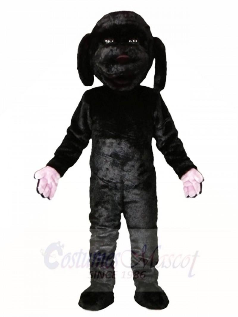 Black Dog with Orange Cloak Mascot Costumes Animal