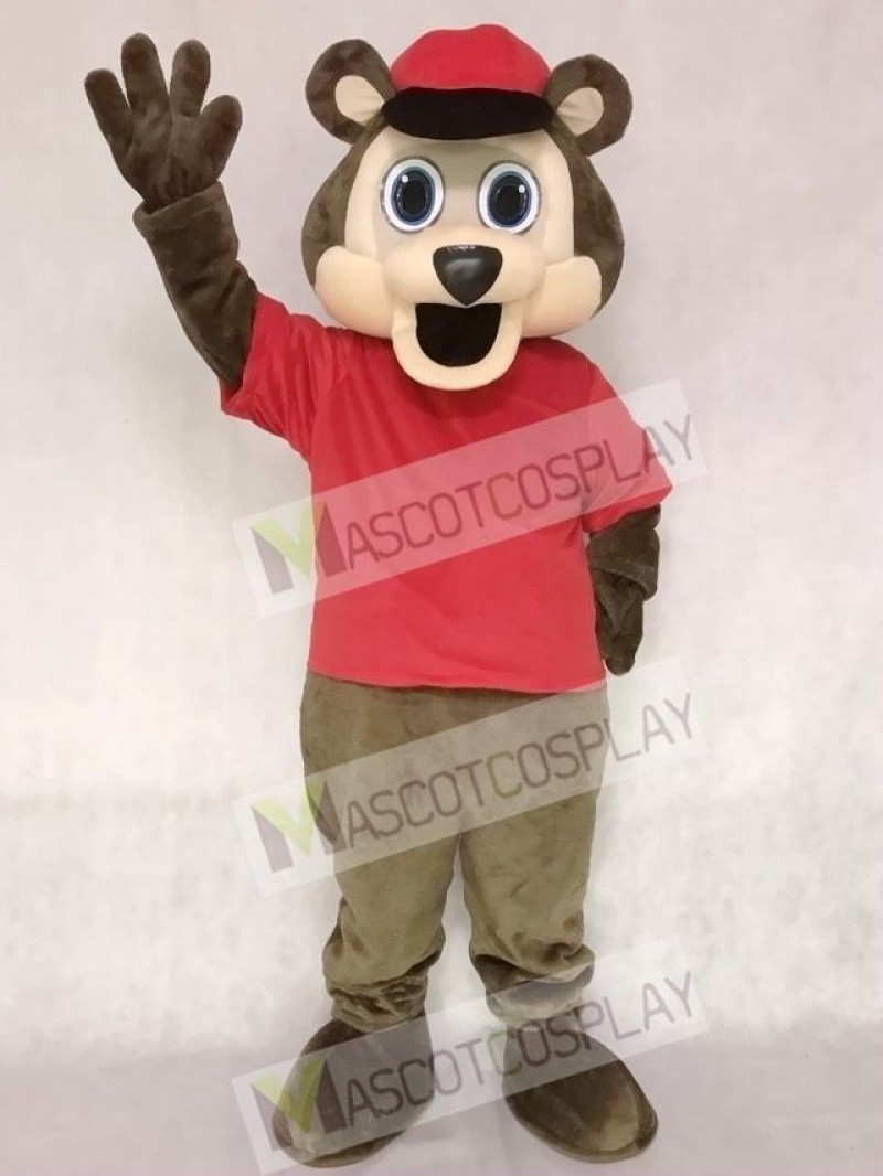 Minnesota Twin Cities T.C. Bear MLB Brown Bear with Hat Mascot Costume