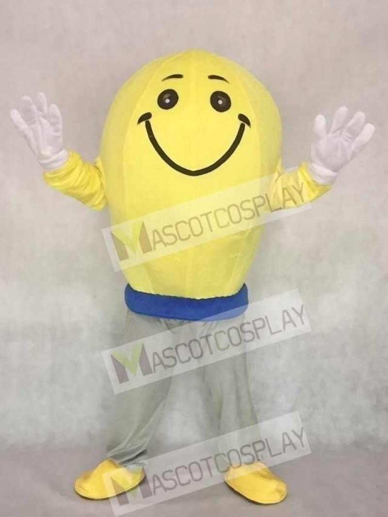 High Quality Cute Light Bulb Mascot Adult Costume