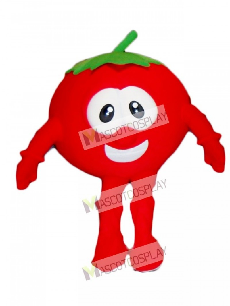 Bob the Tomato Mascot Costume from VeggieTales