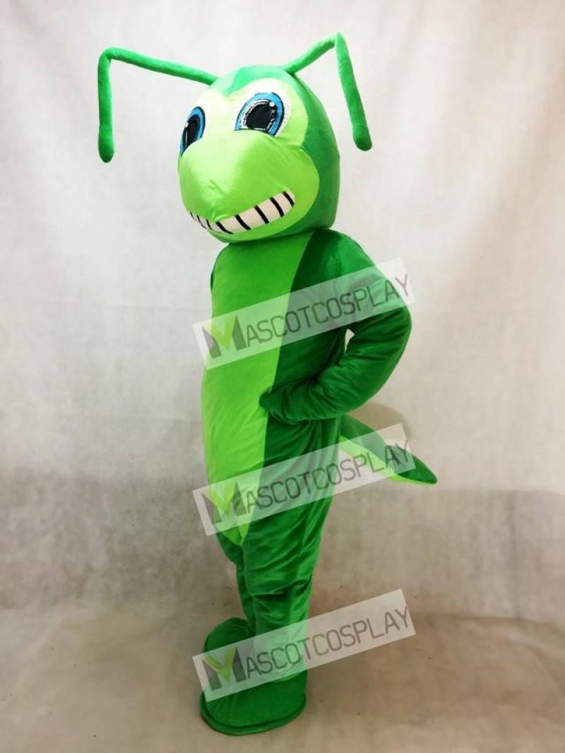 New Grasshopper Mascot Costume Insect