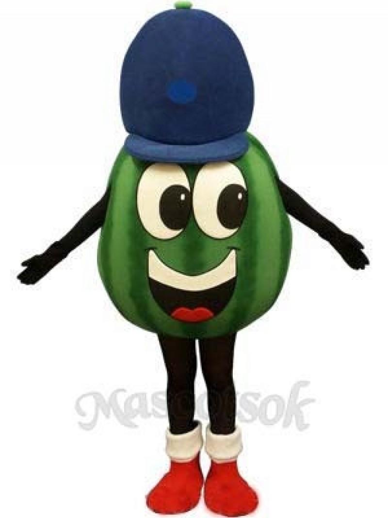 Madcap Watermelon Mascot Costume