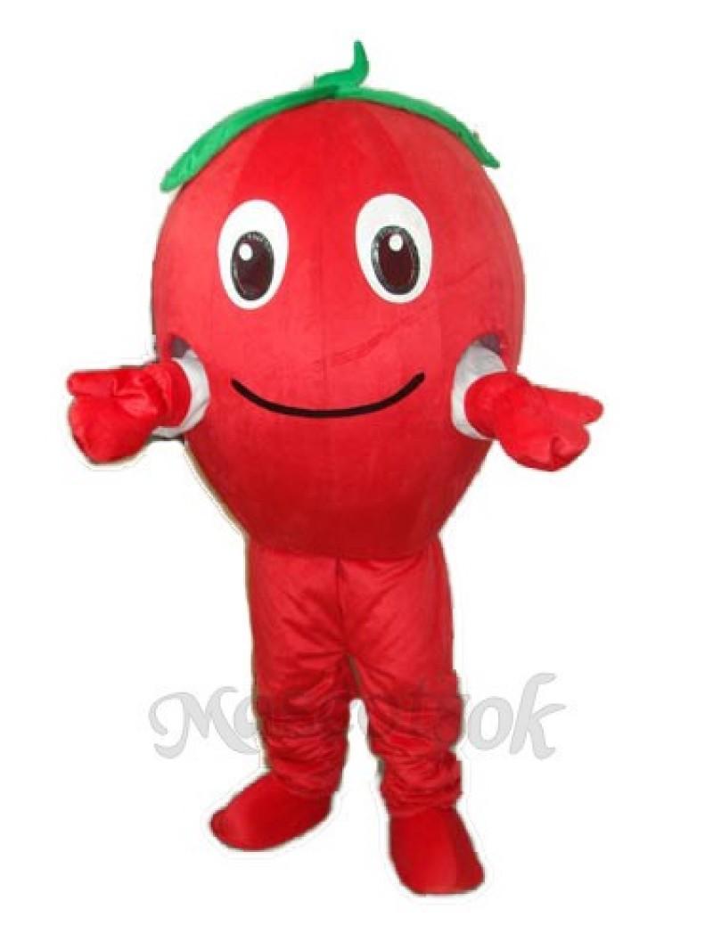 Red Apple Mascot Adult Costume