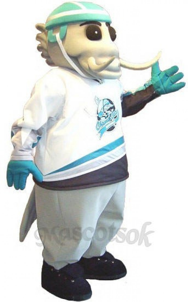Finnley the Catfish Custom Hockey Mascots