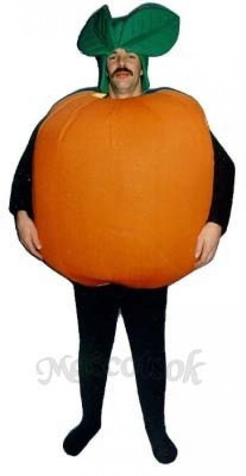 Orange Mascot Costume