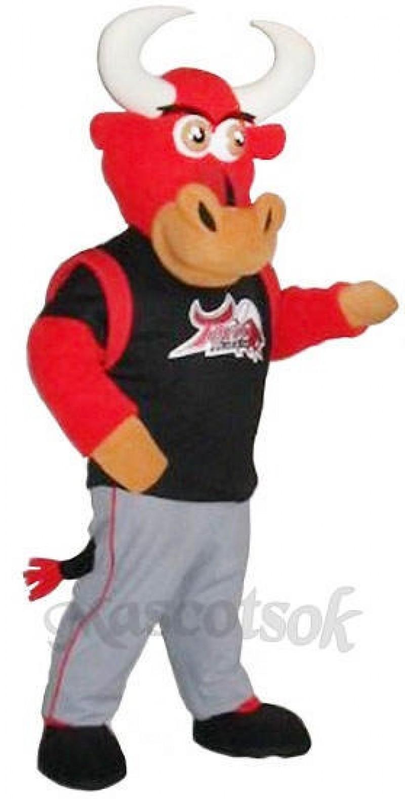 TijuanaToros Custom Hockey Mascots