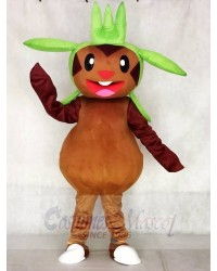 Chespin Pokemon Pokémon GO Mascot Costume Pocket Monster Grass Type Chespie