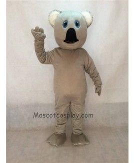 Cute New Koala Bear Mascot Costume