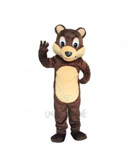 New Chocolate Bear White Belly Mascot Costume