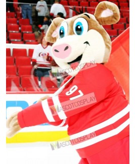 Stormy Carolina Hurricanes Ice Hog Mascot Costume