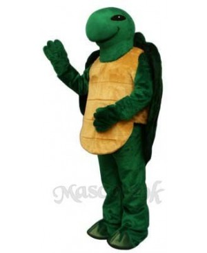 Pond Turtle Mascot Costume