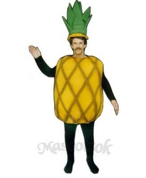 Pineapple Mascot Costume