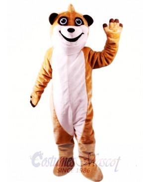 Meerkat Mascot Costume