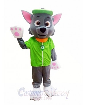Paw Patrol Ecology Pup Rocky Mascot Character Costume