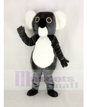 Cute Gray Koala Mascot Costume Animal