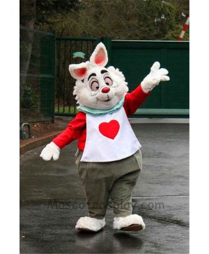 Easter Alice In Wonderland RABBIT Mascot Easter Bunny Costume