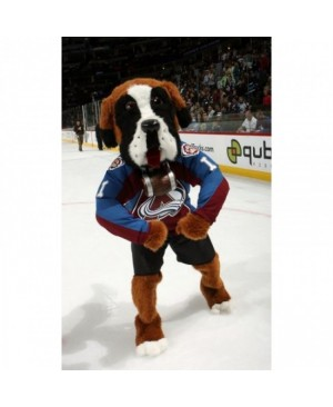 Colorado Avalanche Bernie the St. Bernard All Star Game Bernie Dog Mascot Costume for the Miami Heat