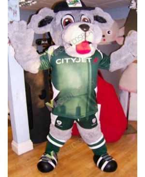 High Quality Adult Ireland Digger Dog in Green Suit Mascot Costume
