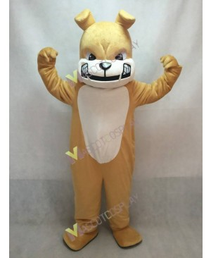 New Tan Bulldog Dog White Belly Mascot Costume