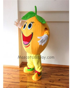 Cute Round Orange Plush Mascot Costume