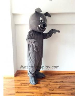 Cute Gray Buster Bulldog Mascot Costume