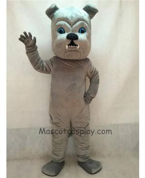 High Quality Vivid Grey Bulldog Dog Mascot Costume