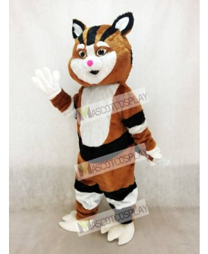 Black and Brown Cat Mascot Costume