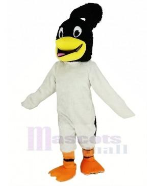 Black Head Roadrunner Bird Mascot Costume Animal