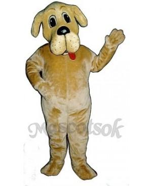 Cute Bernie Bernard Dog Mascot Costume