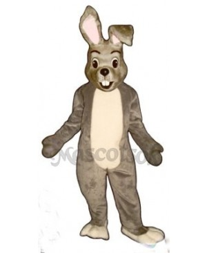 Easter Happy Bunny Rabbit Mascot Costume