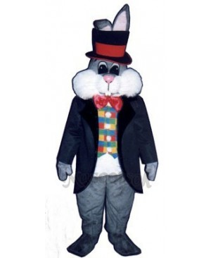 Cute Easter Bunny Rabbit In Hat Mascot Costume
