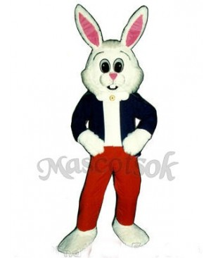 Easter Hare Bunny Rabbit Mascot Costume