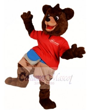 Dark Brown Bear Mascot Costumes