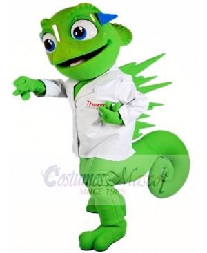 Chameleon Mascot Costumes Lizard Iguana