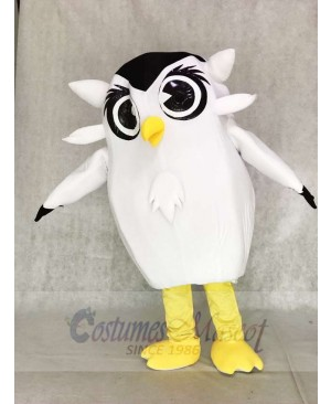 Cute White Owl Mascot Costumes Bird Animal