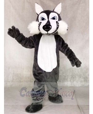 High Quality Dark Gray Wolf Mascot Costumes Animal