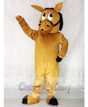 Barney Burro Donkey Mascot Costumes Animal