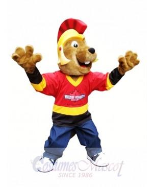 Beaver in Helmet Mascot Costumes