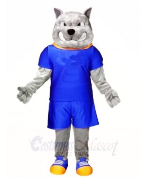 Gray Dog in Blue Suit Mascot Costumes Animal