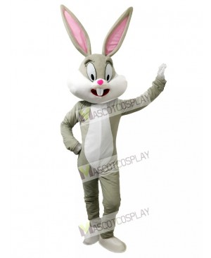Bugs Bunny Easter Rabbit Mascot Costume