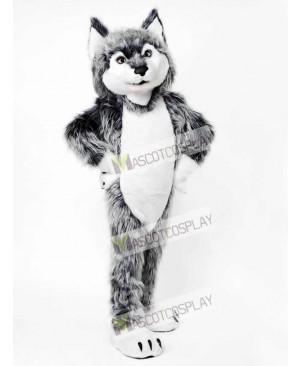 Gray Wolf Mascot Costume