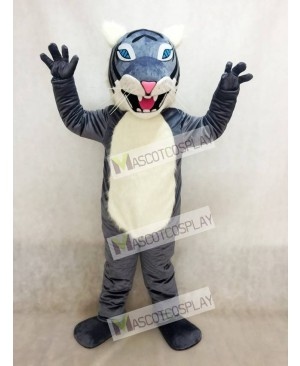 Gray Wildcat Mascot Costume with Blue Eyes